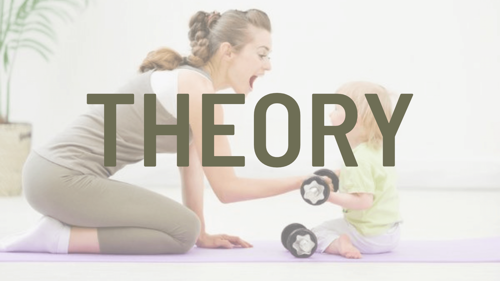 Theory Postnatal Essentials for Pilates and Fitness Professionals